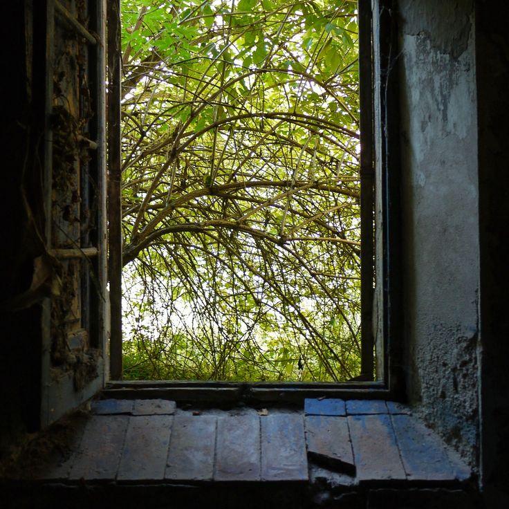 #window #finestra #ventana