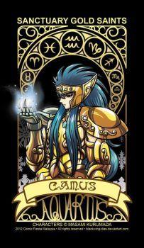 Saint Seiya - Aquarius by blackwing-dias