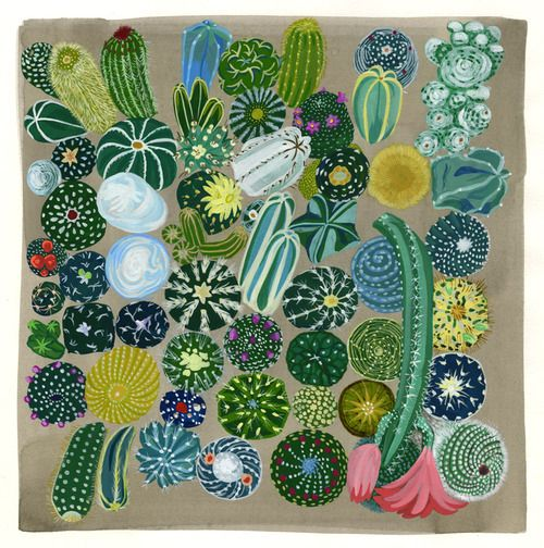 Succulent painting, unknown