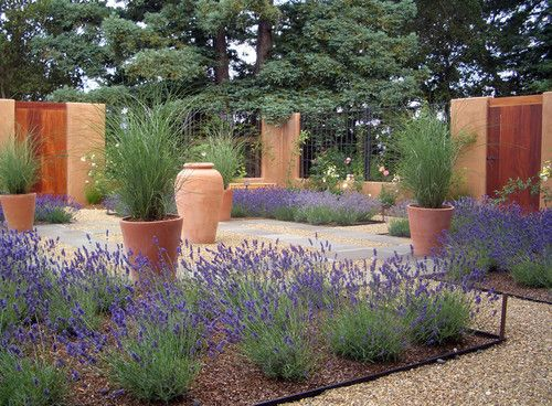 like the purple sage or lavendar...and large pots