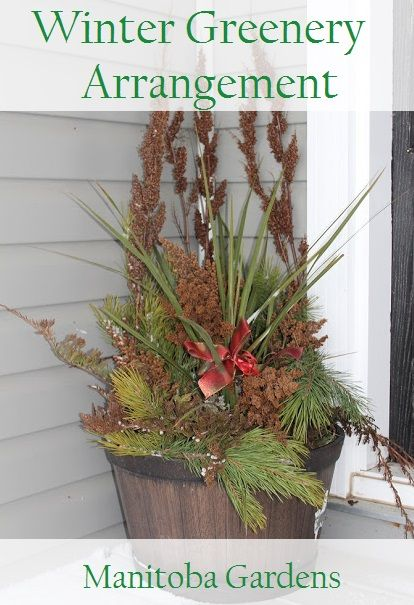 MANITOBA GARDENS: Winter Greenery Arrangement