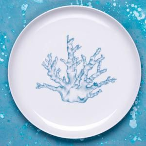 Porcelain dinner and dessert plate (both sizes available) with hand drawn illustration of coral in turquoise.