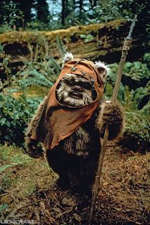 Running With Scissors: Halloween Costume: Ewok
