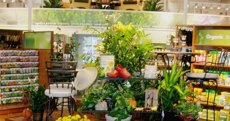Image Result For Armstrong Garden Center Image Result For