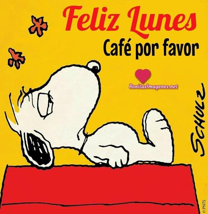 Pin De Elvi En Saludos Frases De Snoopy Reir Frases Buenos Dias Con Snoopy