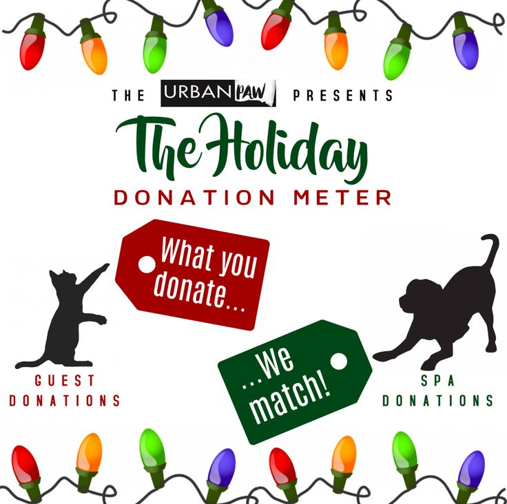 For the month of December, The Urban Paw will be matching any of your donations to Peterborough Humane Society through the spa. To learn more about how you can help give our furry friends the best Christmas ever, check out the blog on our website!