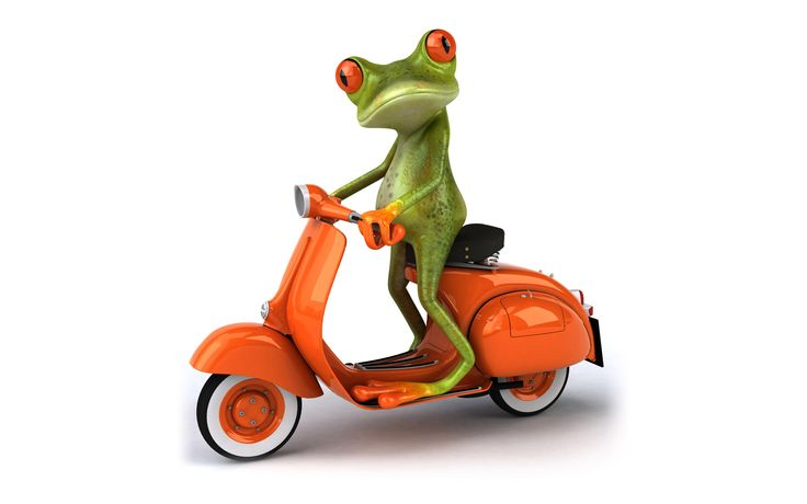 Wallpapers hd 3D Frog Vespa