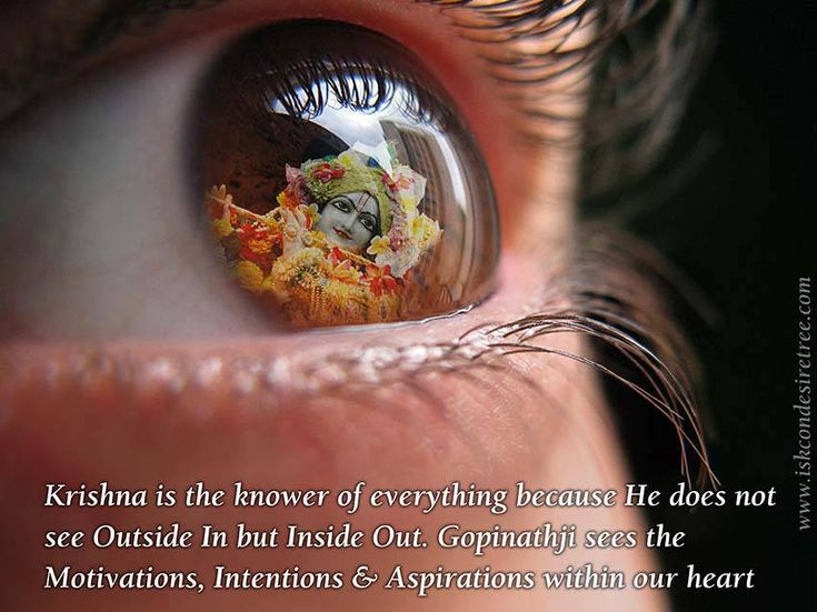 Krishna – The Knower of Everything…