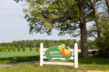 Explore the vast array of sight-seeing opportunities in Howard County, Maryland including: nature centers, parks, farms, and more.