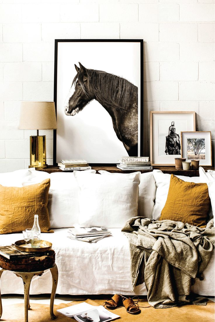 Limited Edition Brumby Photographic Print - Kara Rosenlund