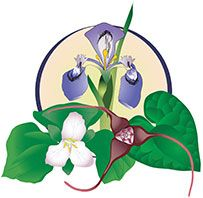 Professional Herbalist Training Program | The Northwest School For Botanical Studies      ...Someday...