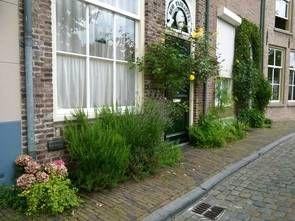 Foto geveltuin 1e prijs 2014 's Hertoenbosch Brede Haven 37