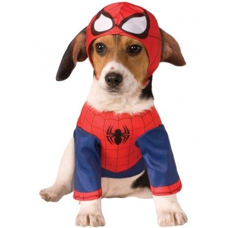 Déguisement pour chien Spiderman™ : ce déguisement pour chien Spiderman™licence Marvel™ comprend le tee-shirt de l'homme araignée et la cagoule, ce déguisement sera parfait pour son anniversaire, carnaval, fêtes déguisées.