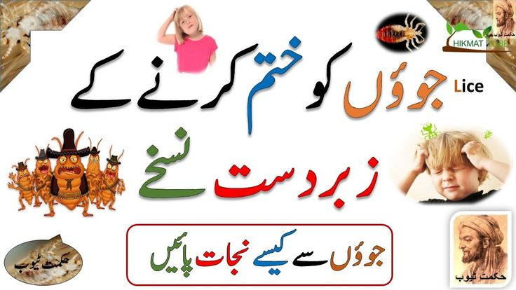 Lice Treatment Home Remedies In Hindi