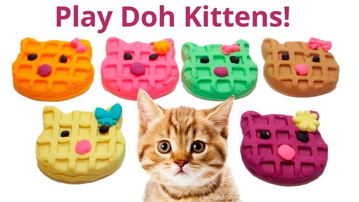 cool Cooking Videos - Play Doh - Cats Waffle Maker :) Videos for Children Cooking Learn Colors playset Funny Songs #Cooking #Videos Check more at http://rockstarseo.ca/cooking-videos-play-doh-cats-waffle-maker-videos-for-children-cooking-learn-colors-playset-funny-songs-cooking-videos/