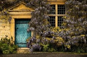 Mapperton Gardens, photography natamagat.co.uk
