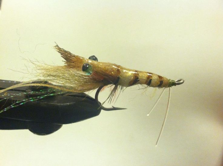 416 best images about saltwater fly fishing on pinterest for Surf fly fishing