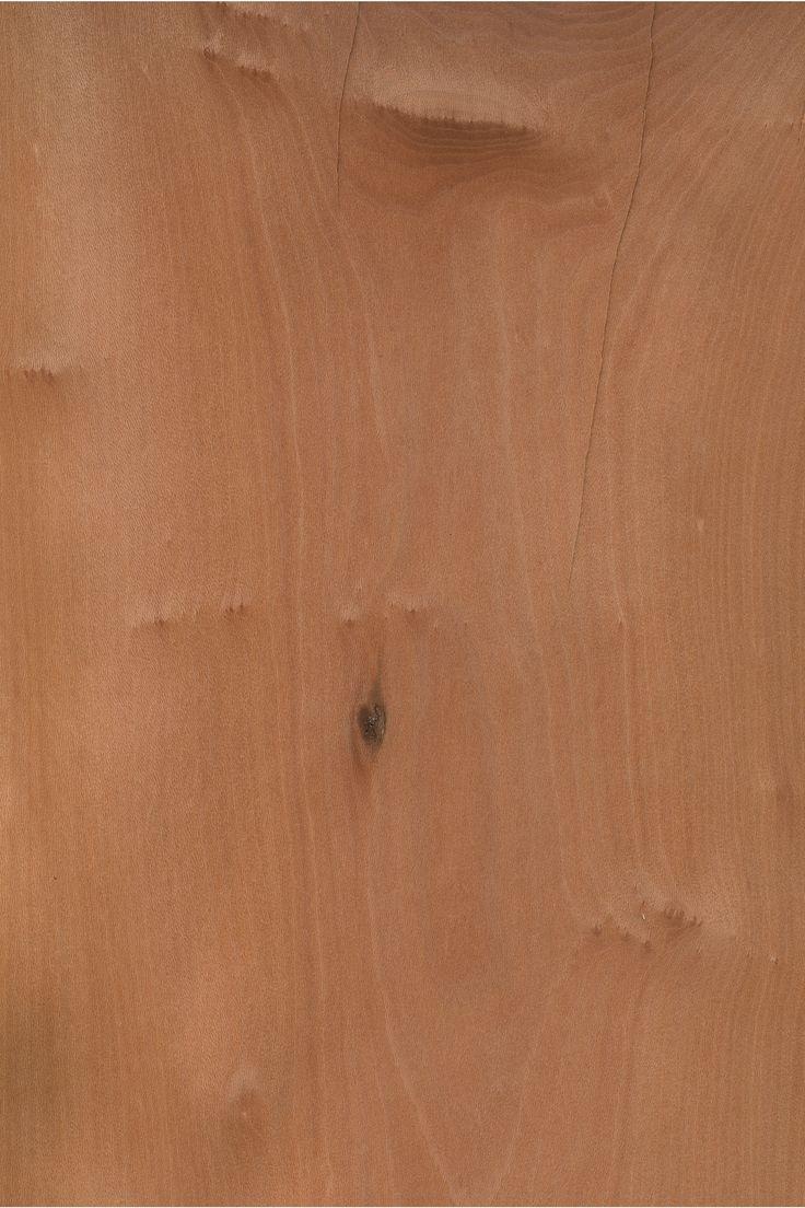 Platane | Furnier: Holzart, Platane, Blatt, rot, braun, Laubholz #Holzarten #Furniere #Holz