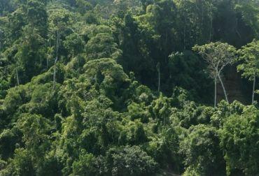 colombia paisajes - Buscar con Google