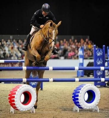 Image result for tyre horse jump