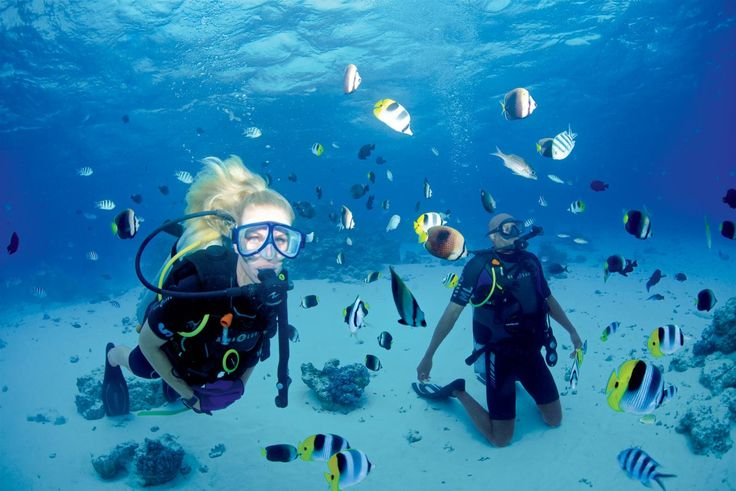 Venture deeper. Every voyage with Paul Gauguin Cruises features optional SCUBA diving excursions led by an expert dive team. The Gauguin is the only luxury small ship in the region to offer PADI certification on board, as well as refresher courses.