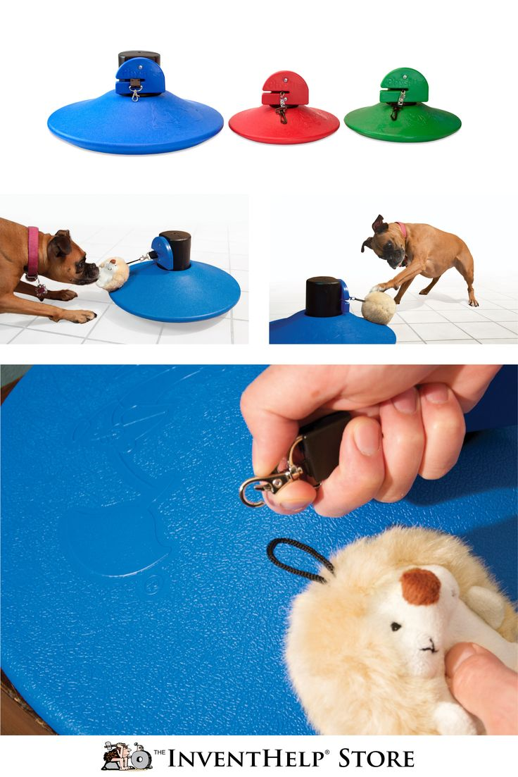 New PhysiPet® - Mobile Exercise and Entertainment Product for Pets Mobile  toy for energetic cats and dogs, allows them to get exercise when home  alone Uses ...