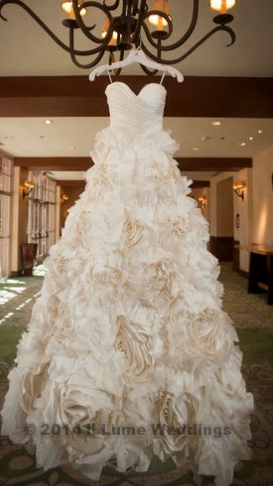 A stunning gown with intricate rose and flower detail made of silk. Has been professionally cleaned, the dress is in perfect condition. Absolutely stunning.