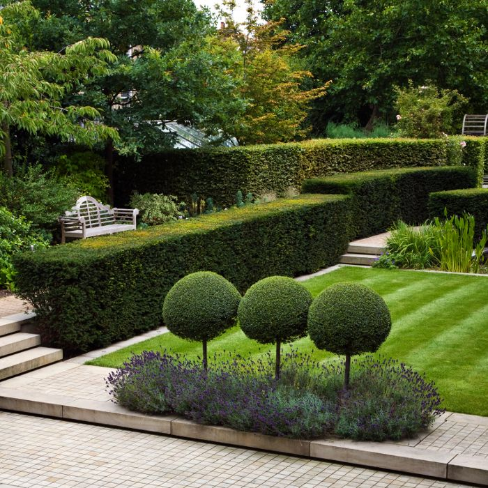 Landform consultants, private garden, Richmond Surrey. This garden combines extensive structural hedging, a focal pond with aquatic planting, herbaceous borders and lawns.