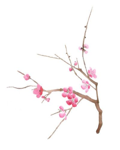 Google Image Result for http://www.mckenziedesigns.com/galleryimages/CherryBlossoms2_L.jpg