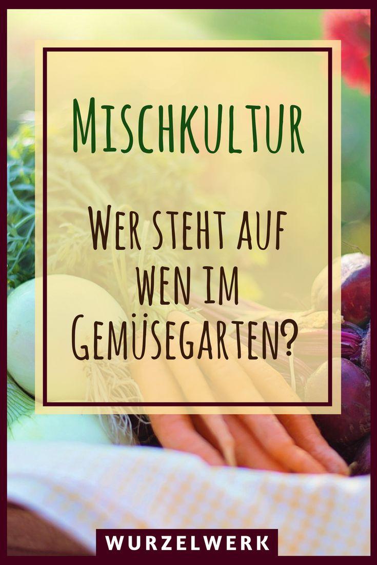Mischkultur im Gemüsegarten: 28 wirksame Mischkultur-Kombinationen für Garten oder Hochbeet. Die ultimative Mischkulturtabelle für Tomaten, Kräuter und Co. #garten #selbstversorgung