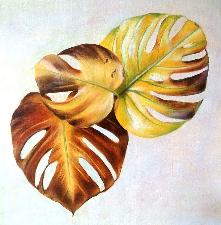 Monstera dying leaves by Alina Draguceanu Oil on canvas. Pictură în ulei pe pânză.