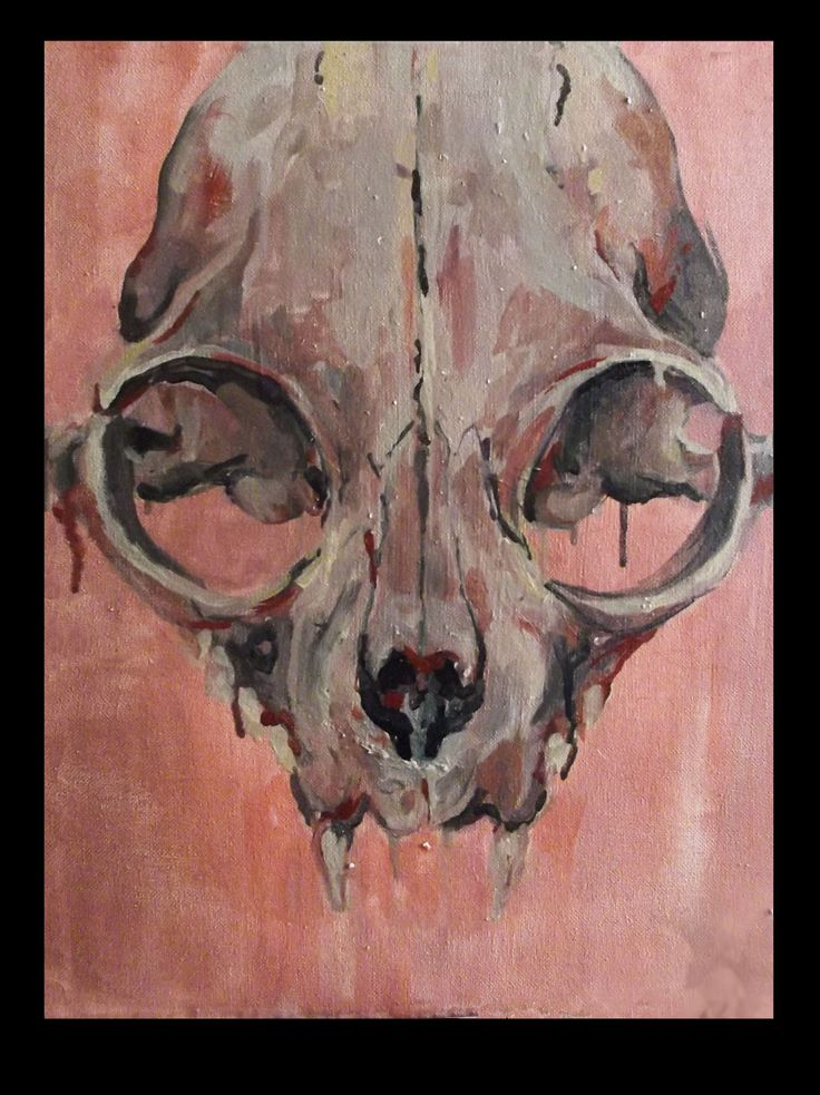 the girls favourite - oil on canvas Virag Papp, 2013 #catskull #oil painting #contemporary art