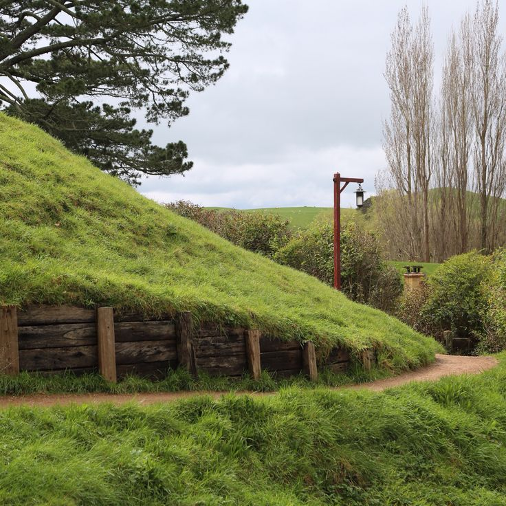 The Shire: LOTR