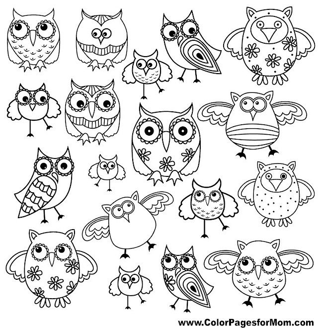 set of eighty funny owls black vector contour isolated on white background stock vector
