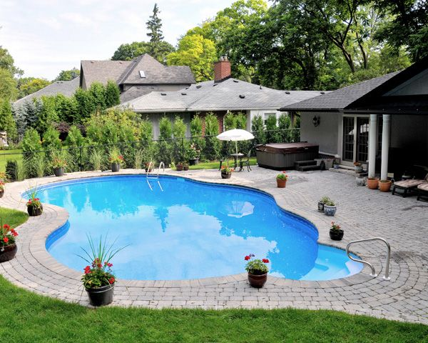 Backyard paradise. Another creation from Buds Spas & Pools.