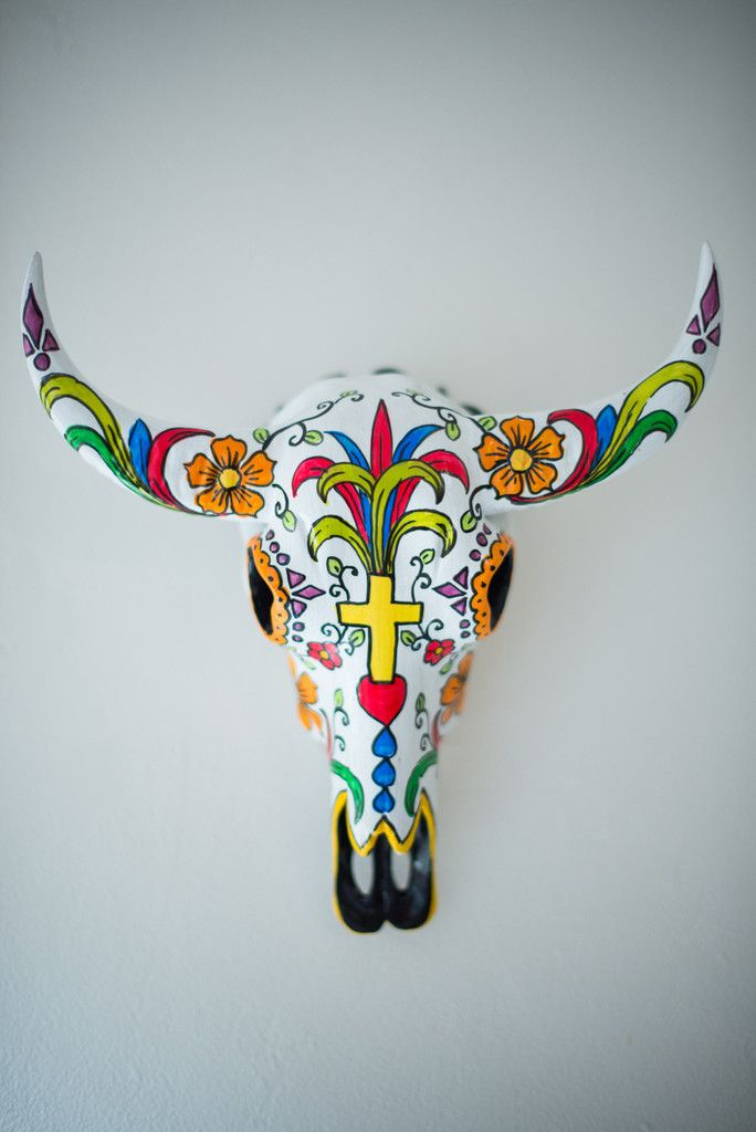 MEXICAN BUFFALO SKULL | Milly and Eugene
