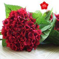 Giardino bonsai semi di fiori.  10 pz vino rosso semi di ortensia.  Bellezza e la fragranza di piante domestiche