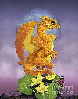 Squash Dragon by Stanley Morrison