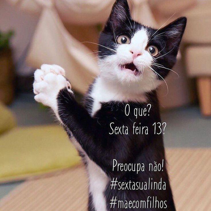 Bom dia com humor!! Sem judiar ou fugir dos gatos pretos hoje hein?! Os bichinhos são totalmente do bem o resto é crendice popular!   #maecomfilhos #momlife #momblogger #sexta13 #crendices  Segue a gente: maecomfilhos.blog.br | maecomfilhos no facebook | Instagram | Twitter | snapchat