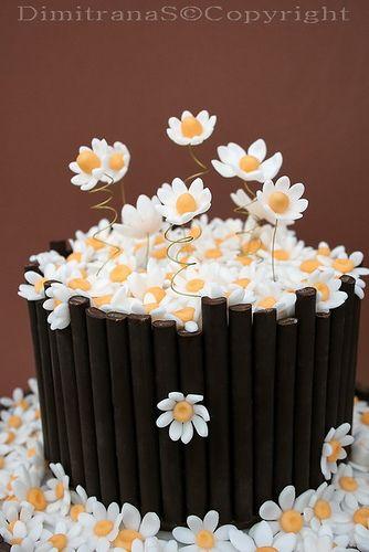 daisy cake I like the fence or bucket idea another take on the stem idea