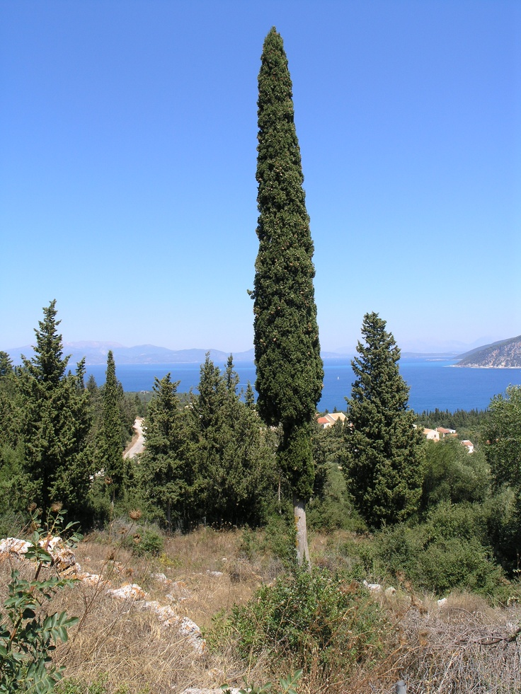 Kefalonia Island and Ionian Sea