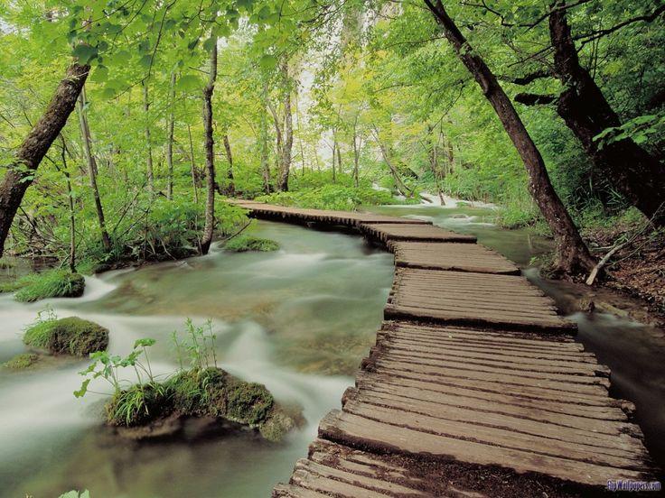 Bridge: Natural Photography, Gardens Paths, Lakes National, Croatia, National Parks, Places, Desktop Wallpapers, Bridges, Plitvic Lakes