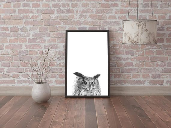 Check out this item in my Etsy shop https://www.etsy.com/listing/520741698/digital-image-owl