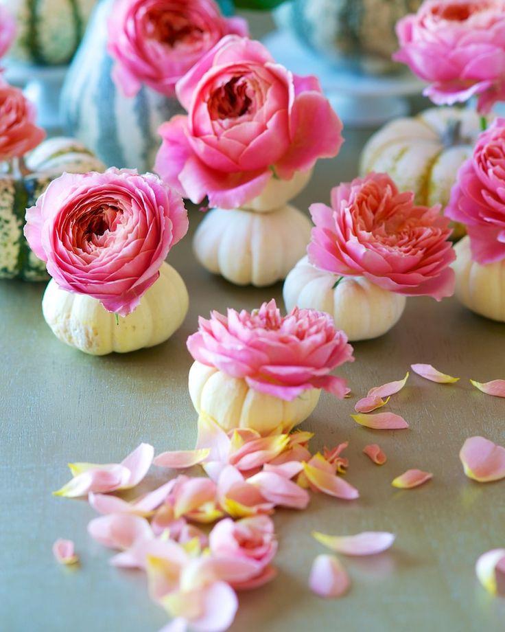 Unique Vessels: Roses in Pumpkins | Tulipina.com
