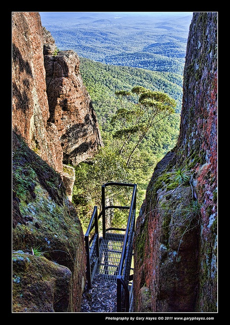 005_Views from Pigeon House Mountain, Didhol, Budawangs by Gary Hayes, via Flickr