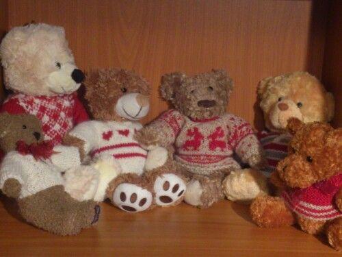 Rada teddy
