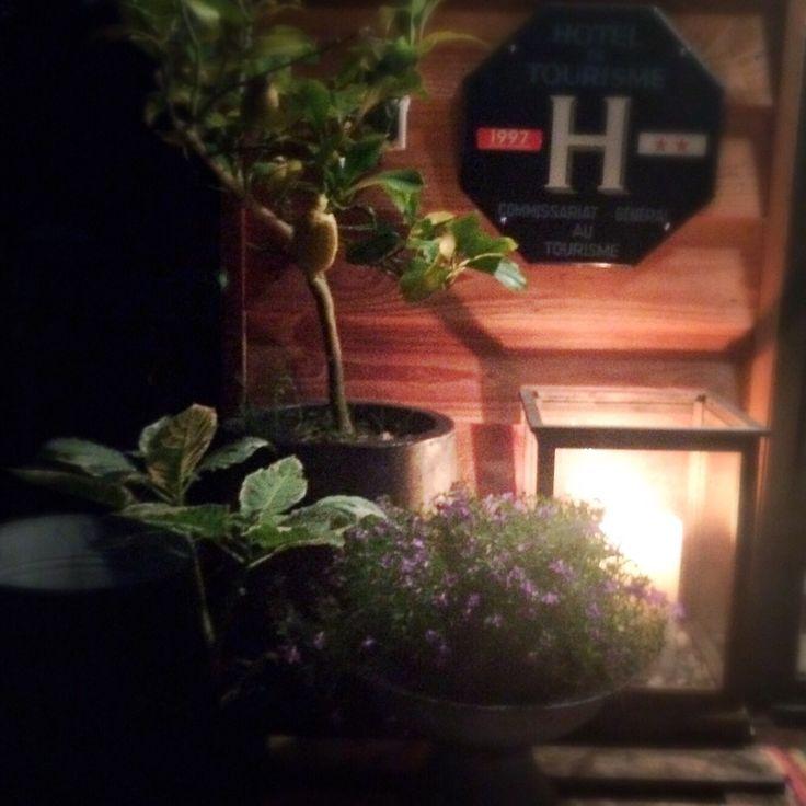 Binnenkijken bij babs1 - Ondanks dat het vroeg donker is is het genieten van de tuin. Kaarsen aan, vuurtje opstoken en genieten maar.