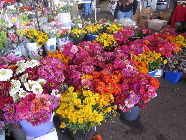 Flowers at Sacramento Farmers' Market