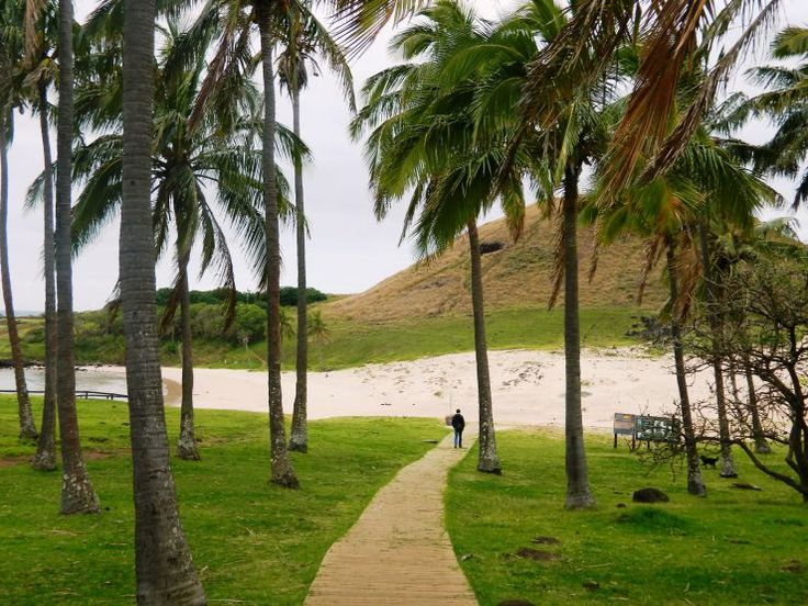 12 THINGS YOU MUST DO ON EASTER ISLAND Anakena beach