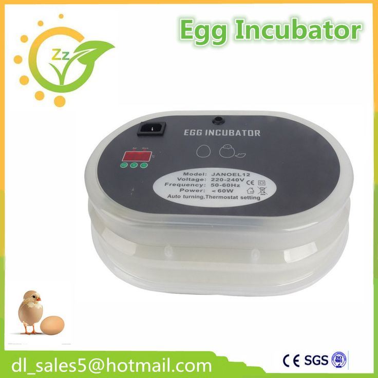 how to make an incubator for bird eggs